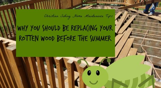 Why Replacing Rotten Wood Is A Good Idea Before The Summer